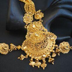 Imitation Brown stone studded elegent long necklace set